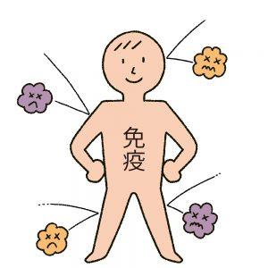 免疫細胞の「種類」「役割」
