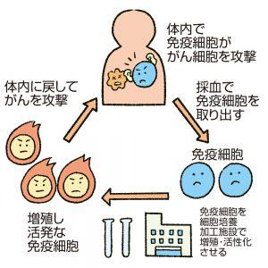 がん免疫療法
